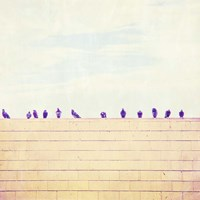 Birds on Wires III Fine Art Print