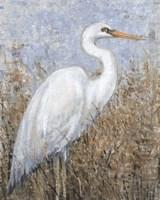 White Heron I Fine Art Print