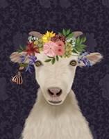 Goat Bohemian 1 Fine Art Print