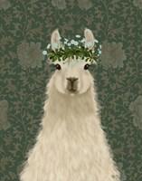 Llama Bohemian 1 Fine Art Print