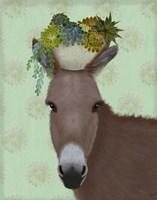 Donkey Succulent Fine Art Print