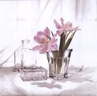 Vanity Floral II Fine Art Print