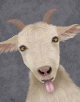 Funny Farm Goat 2 Fine Art Print