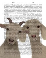 Goat Duo, Looking at You Book Print Fine Art Print