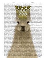 Llama Queen Book Print Fine Art Print