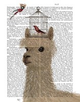 Llama and Birdcage Book Print Fine Art Print