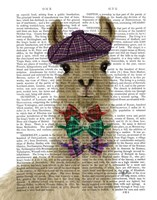 Llama Dapper Book Print Fine Art Print