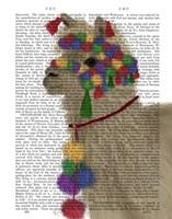 Llama Traditional 2, Portrait Book Print Fine Art Print