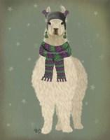 Llama with Purple Scarf, Full Fine Art Print