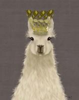Llama Queen Fine Art Print