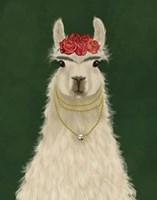 Llama F Fine Art Print