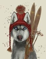 Husky, Skiing Fine Art Print