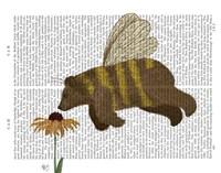 Bear Bee Book Print Fine Art Print