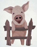 Pig On Fence Fine Art Print