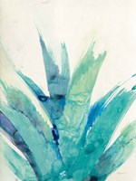 Cool Aloe Fine Art Print
