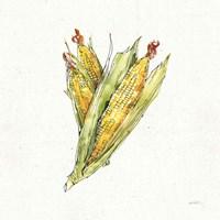 Veggie Market III Corn Fine Art Print