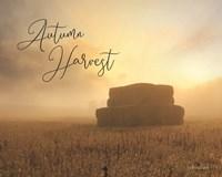 Autumn Hay Harvest Fine Art Print