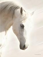 Pegasus I Fine Art Print