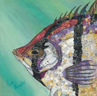 Angelfish Fine Art Print