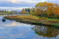 Estuary Autumn Fine Art Print