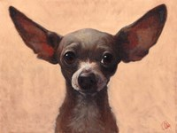 Chihuahua Fine Art Print
