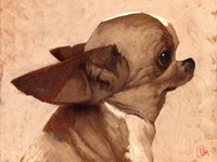 Profile-Chihuahua Fine Art Print