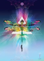 Cosmic Dragonfly Fine Art Print