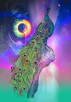 Cosmic Peacock Fine Art Print