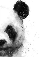 Panda At Attention Fine Art Print