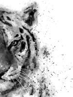Tiger At Attention Fine Art Print