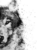Wolf At Attention Fine Art Print