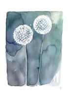 Stardusts Fine Art Print