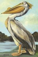The Grand Pelican Fine Art Print