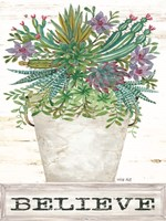 Believe Succulents Fine Art Print