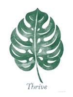 Botanic Inspiration IV Fine Art Print
