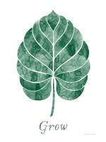 Botanic Inspiration III Fine Art Print