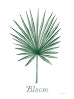 Botanic Inspiration II Fine Art Print