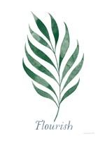 Botanic Inspiration I Fine Art Print