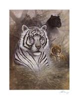 Serengeti Predator Fine Art Print