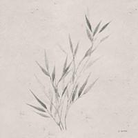 Soft Summer Sketches III Sq Fine Art Print