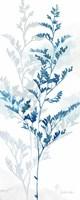 Indigo Botanical panel III Fine Art Print