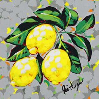 Fruit Sketch Lemons Fine Art Print