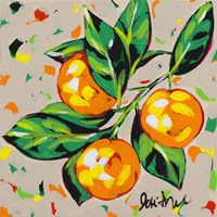 Fruit Sketch Oranges Fine Art Print