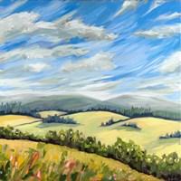 Wildeflower Meadow Fine Art Print