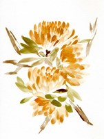 Farmhouse Florals VII Fine Art Print