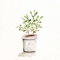 Potted Botanicals I Fine Art Print