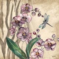 Boho Orchid & Dragonfly I Fine Art Print