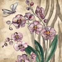 Boho Orchid & Dragonfly II Fine Art Print