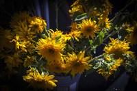Yellow Flowers Fine Art Print