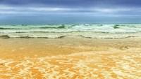 On the Beach Fine Art Print